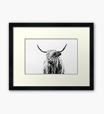 portrait of a highland cow (landscape format) Framed Print