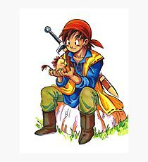 Dragon Quest 8 Photographic Print