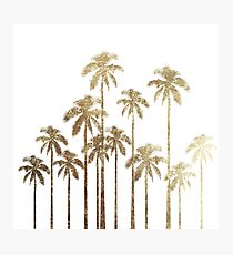 Glamorous Gold Tropical Palm Trees on White Photographic Print