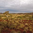 Outback Pilbara by Caroline Scott
