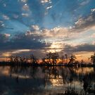 Brilliant Sunrise On The Marsh by Gary Chapple