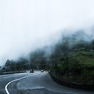 The Mist by madewithtubo