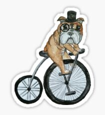 English bulldog riding a penny-farthing Sticker