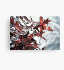 Ice on Tree Leaves Canvas Print