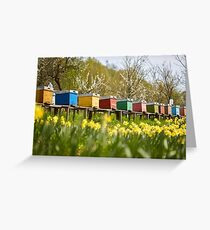 Bee hives in the field and orchard Greeting Card