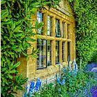 Delphiniums & Lavender by vivsworld