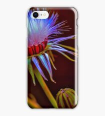 Photo Art, common groundsel seed head iPhone Case/Skin