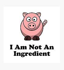 Ingredient Pig Photographic Print
