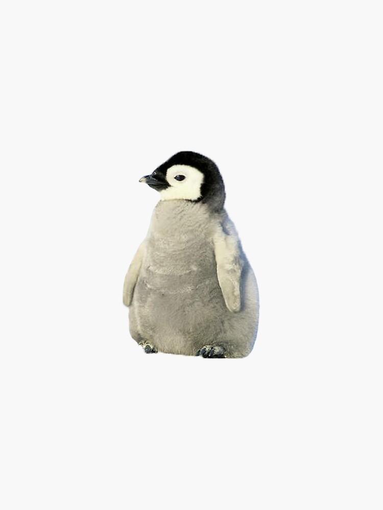 baby penguin by Yvonneyuhan