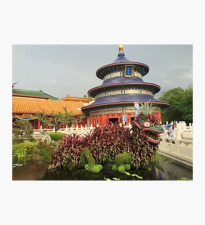 Lucky Dragon Topiary Photographic Print