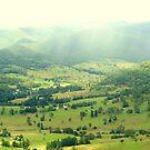 Green Valley from Rosins lookout Beechmont Qld. Australia  by Virginia McGowan
