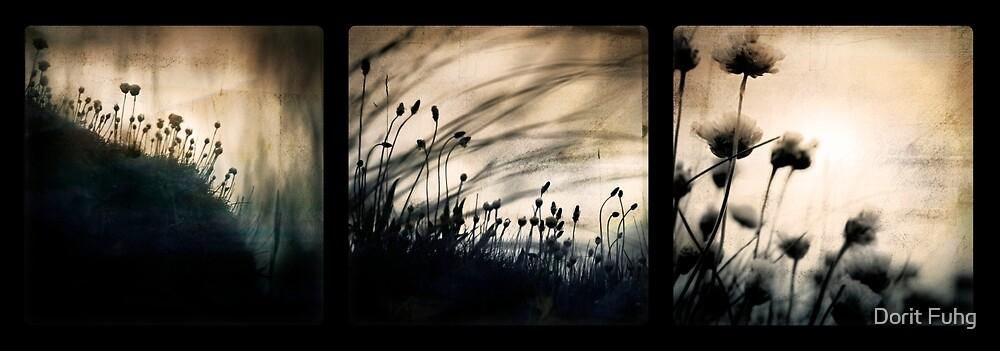 wild things by Dorit Fuhg