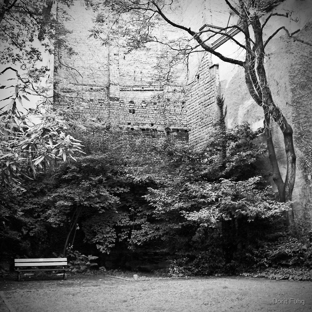 the courtyard by Dorit Fuhg