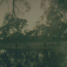 Gum Swamp Dam Solargraphy by Natalie Ord
