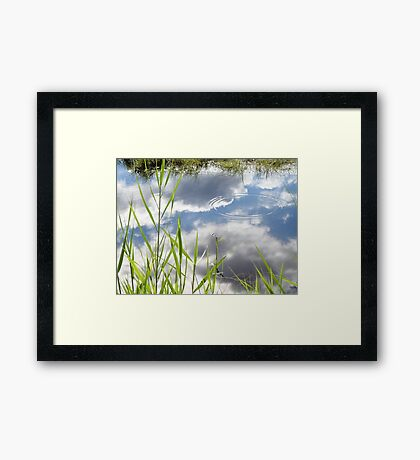 Couds & dragonfly Framed Print