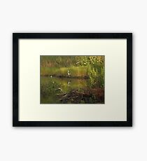 Heron in rich colors Framed Print