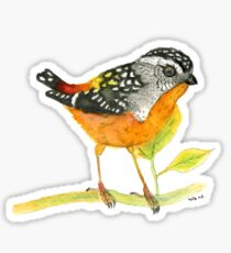 Spotted Pardalote - Colorful Bird Sticker