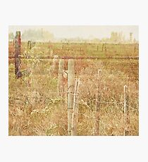 The Fence Line Photographic Print