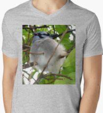 Half bird, half cat Men's V-Neck T-Shirt