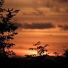 Sunset Plant Derry Ireland by mikequigley