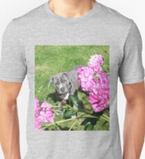 Gorgeous Baby Pit Bull Puppy Dog in Peony Flowers T-Shirt
