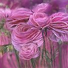 Pink Ranunculus by Carol  Cavalaris