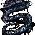 Dragon Swirl by Adam Santana