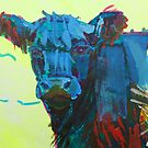 Belted Galloway Cow Head by MikeJory