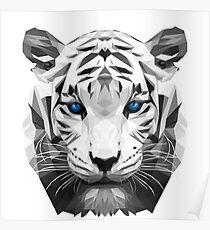 Tiger wild low poly white animal nature Poster