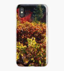 Autumn Vineyard Landscape iPhone Case