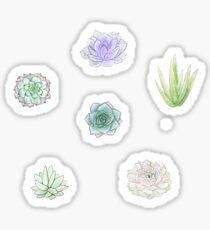 Small Succulents Sticker