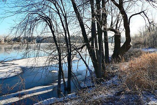 Winter Solstice, A New Beginning by Yannik Hay