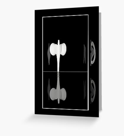 Elusive Encounter Black and White - iPhone Case Greeting Card