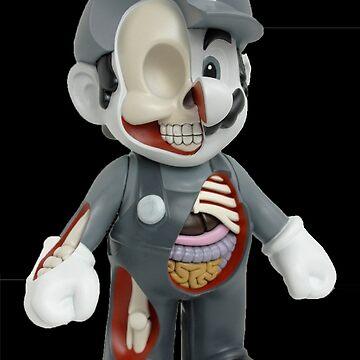 Mario - Anatomy by hidden-arts