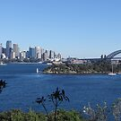 A Taronga Zoo View... Take 2 by Donna Keevers Driver
