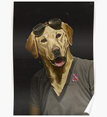 Thrilled Dog Poster