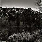 Prescott Lake Sunrise  Monochrome by Wayne King