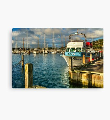 Frances in the Morning Canvas Print