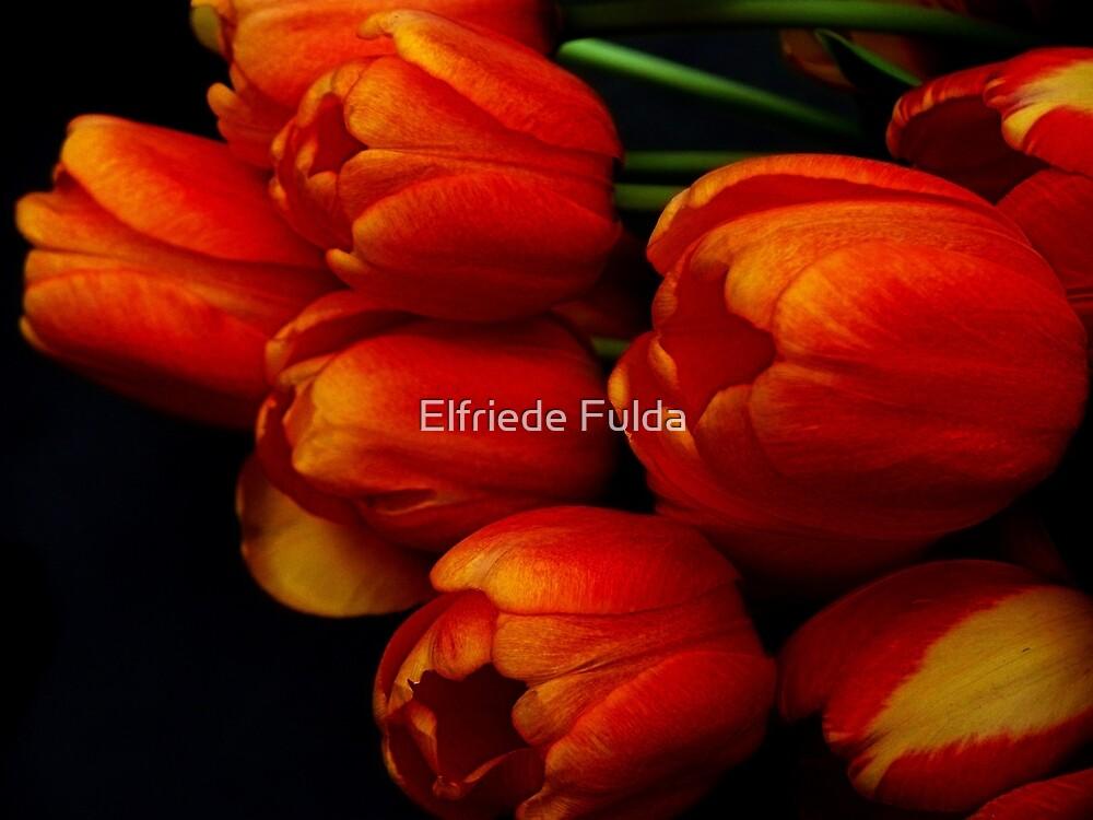 Les Fleurs...... by Elfriede Fulda