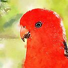 King Parrot by Candy Jubb