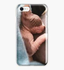 Kitten sphynx cat bicolor sleep iPhone Case/Skin