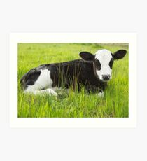 Happy In The Green Grass... Art Print