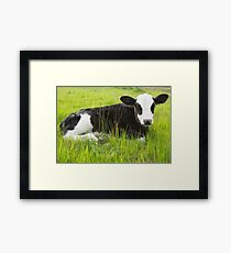 Happy In The Green Grass... Framed Print