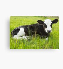 Happy In The Green Grass... Canvas Print