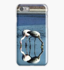 Andean blues iPhone Case/Skin