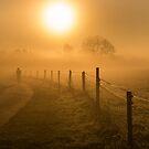 The Path Chosen by John Dunbar
