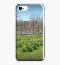 Daffodil Delight iPhone Case/Skin