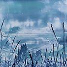 Serene Blue by JulieWaxArtist
