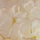 Could It Be Lemon Meringue? by Sandra Foster