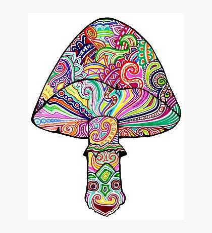 Swirly Mushroom Photographic Print